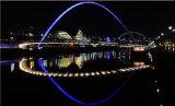 Newcastle Nights