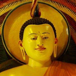 A Sri Lankan Buddha