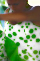 Flamenco in green