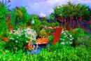 Geoff's Psychedelic Garden