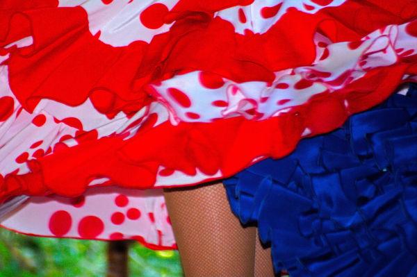 Swirling Flamenco Skirts