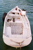 Annecy ducks & boat