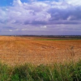 Fields at Barmston, Southview Cottages