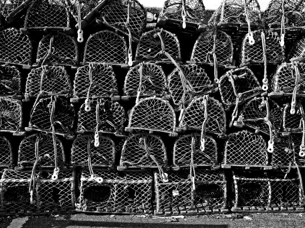 Lobster Traps, Seahouses