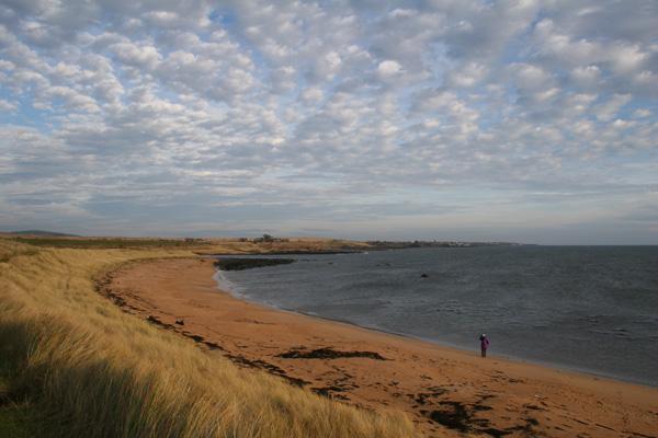 Fife Coastal Path, on the Beach