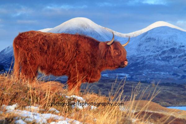Around Scotland (various galleries)