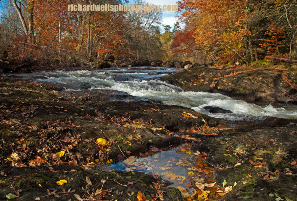 Autumn on River Almond, Perthshire