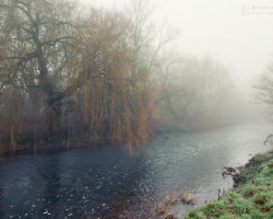 Wintry Day on the Stour