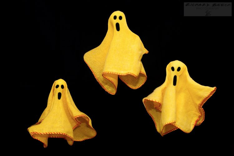 Ghost Dusters