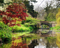 Minterne Gardens