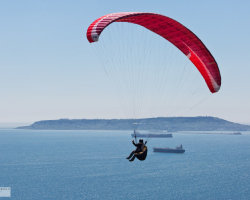 Paraglider and Portland