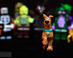 Run, Scooby, Run