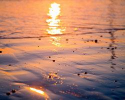 Wet Sand at Sunrise