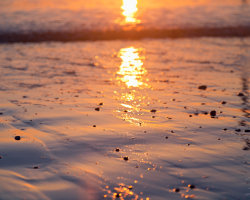 Wet Sand at Sunrise 2