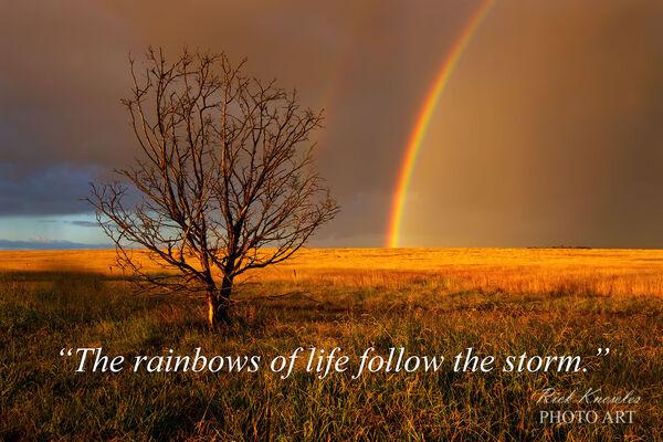 Rainbows Of Life