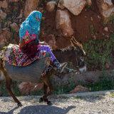 Lady on donkey