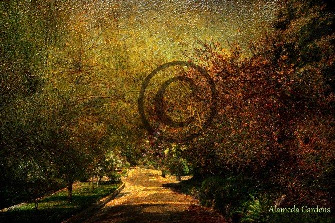 Alameda Gardens pathway