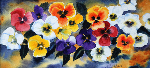Pansies (watercolour) by Sheila Linkleter