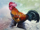 Cockerel (watercolour) by Rosie Muncaster