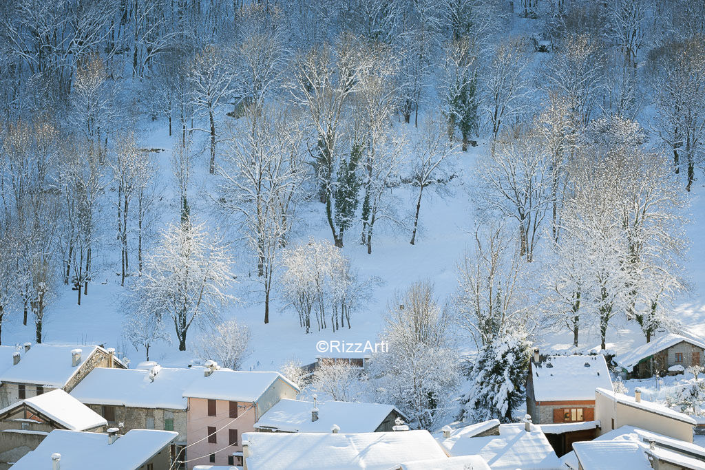 Olbier Snow