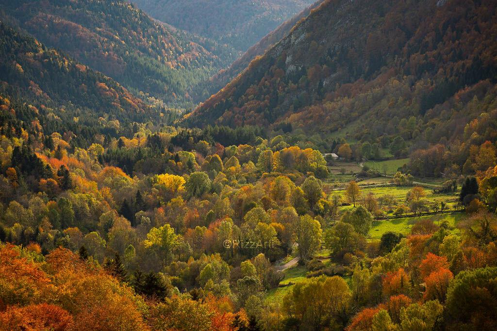 Pontareille Autumn