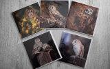 5 British owl greeting cards