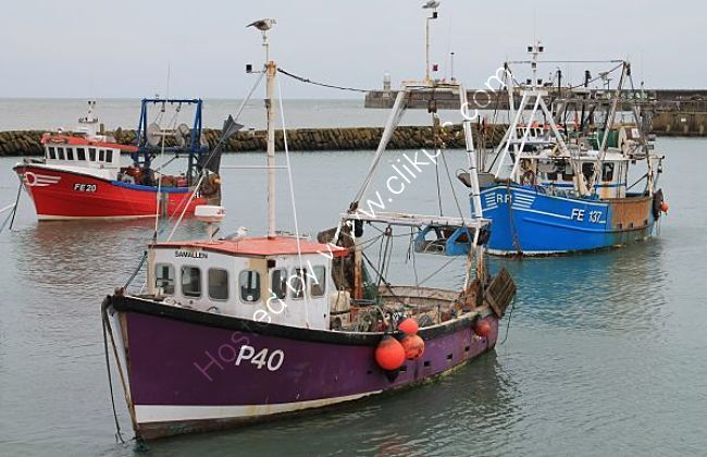 Ref-FE3 Trawlers In Folkstone Harbour Kent Gt Britain 2014 (C)RLT Aviation And Maritime Images 2020 opt