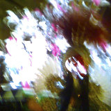 Carnaval, Vinaroz