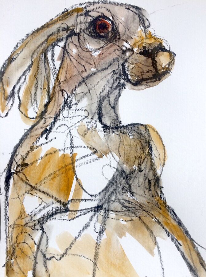 Over the shoulder hare.(Clearance item. Can be posted)