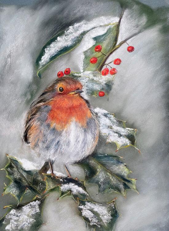 Robin on Snow