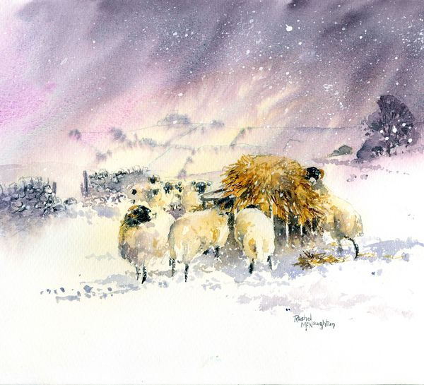 Swaledale Christmas
