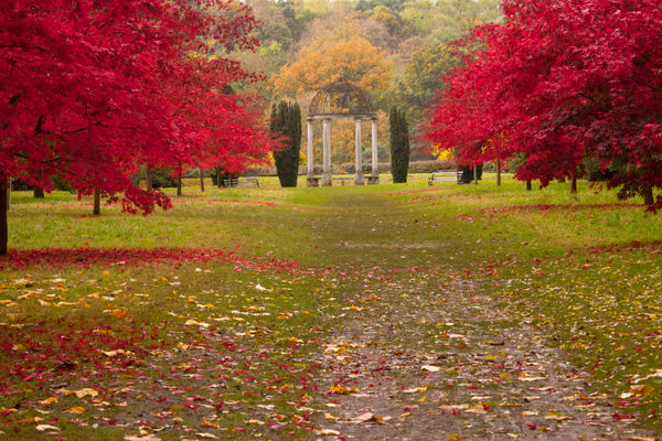 Thorp Perrow autumn colour