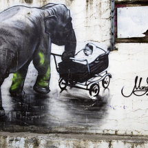 Elephant with a pram