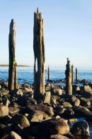 Beach, Lindisfarne, Northumberland