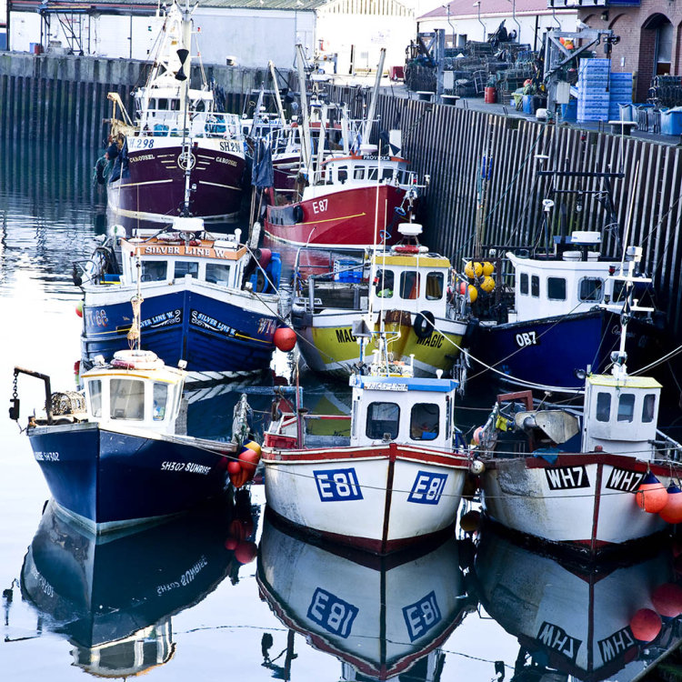 Fishing boats at the dock, Scarborough