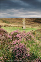 Bennett's Cross with Heather