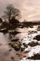 Dawn Cherrybrook West Dart confluence