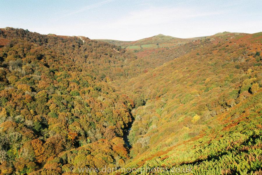 Dart Gorge