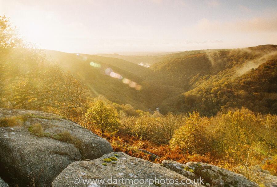 The Dart Gorge