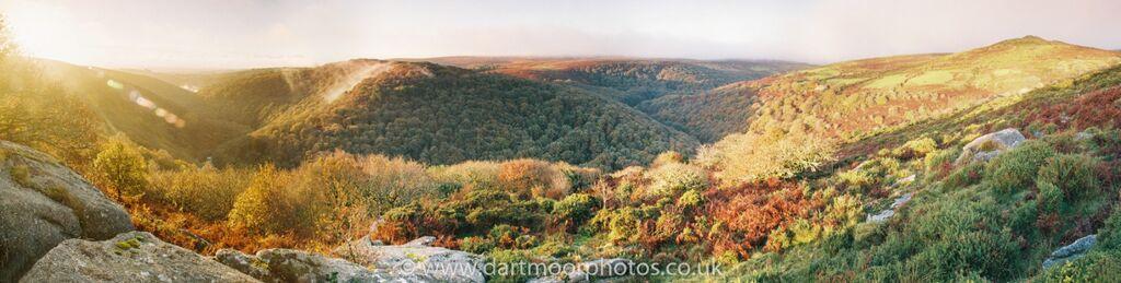 Dart Gorge panorama