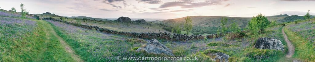 Bluebell sunrise with Houndtor, Greator and Haytor