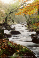 River Taw, Belstone Cleave