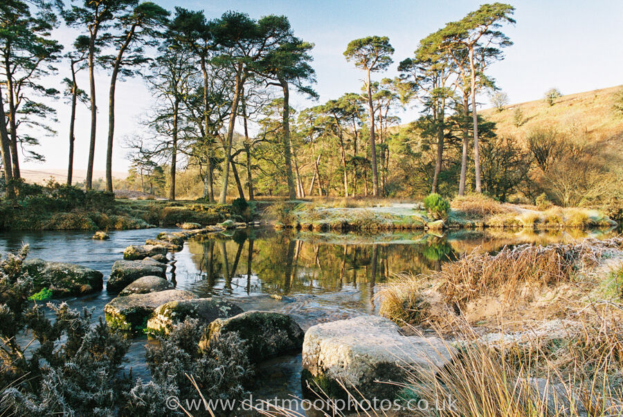 River West Dart Stepping Stones