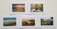 Purchase Greetings Cards Pack of Five Click Here