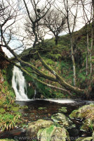 Shavercombe Falls