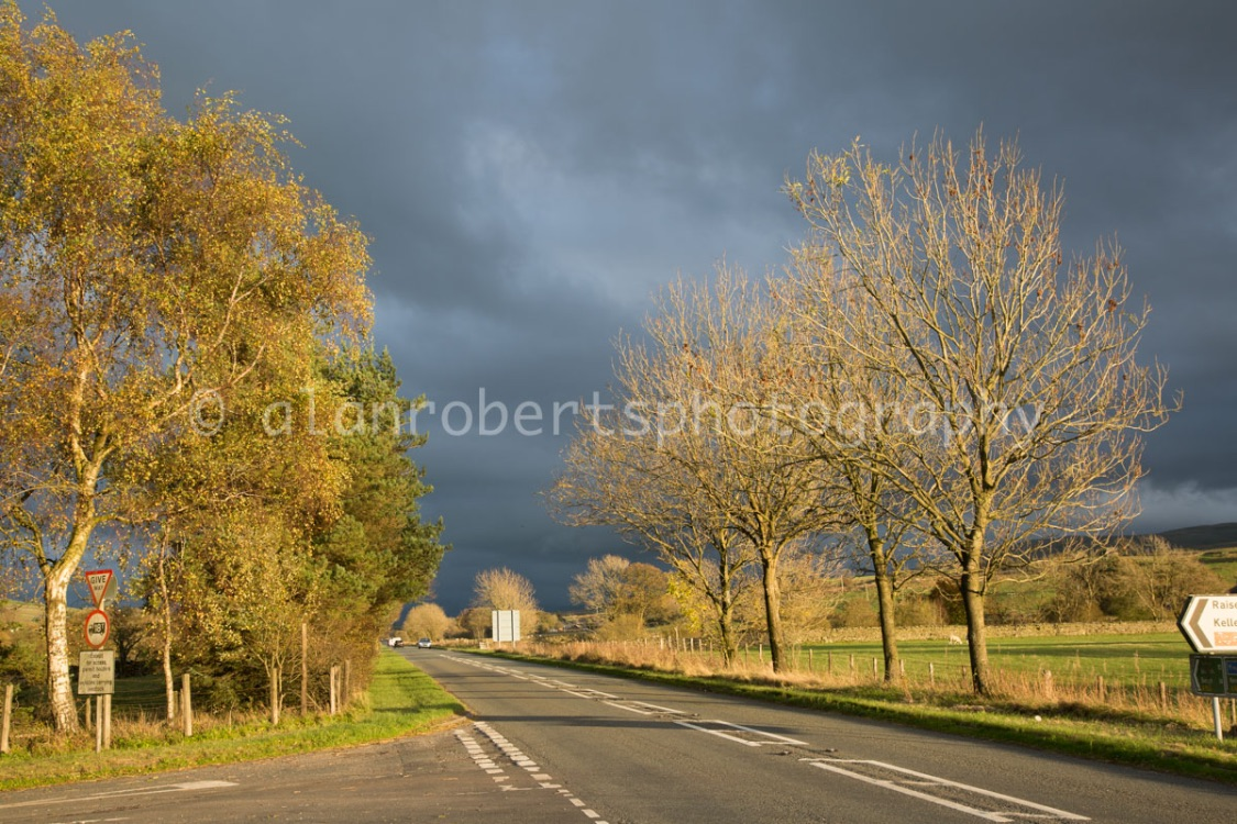 STORMY LIGHT A685