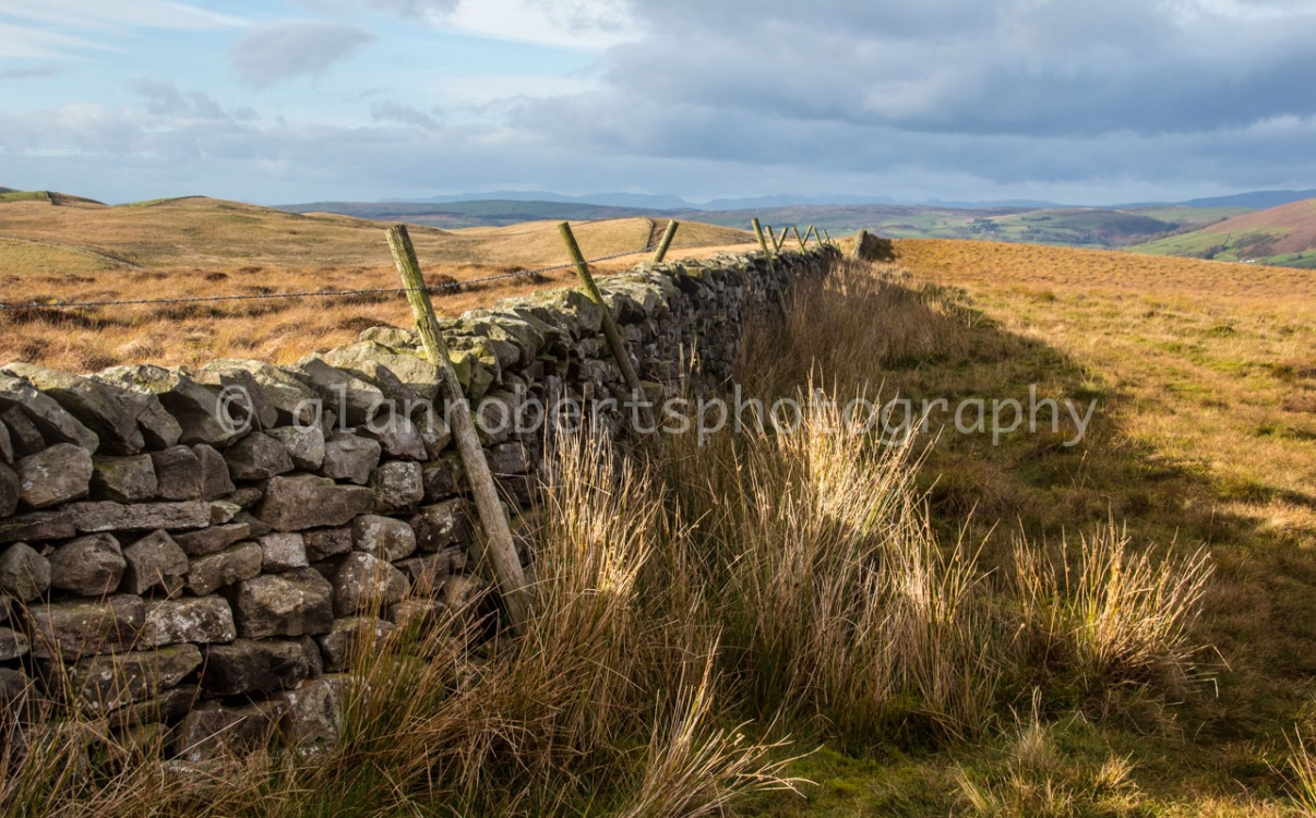 DENTDALE WALLS