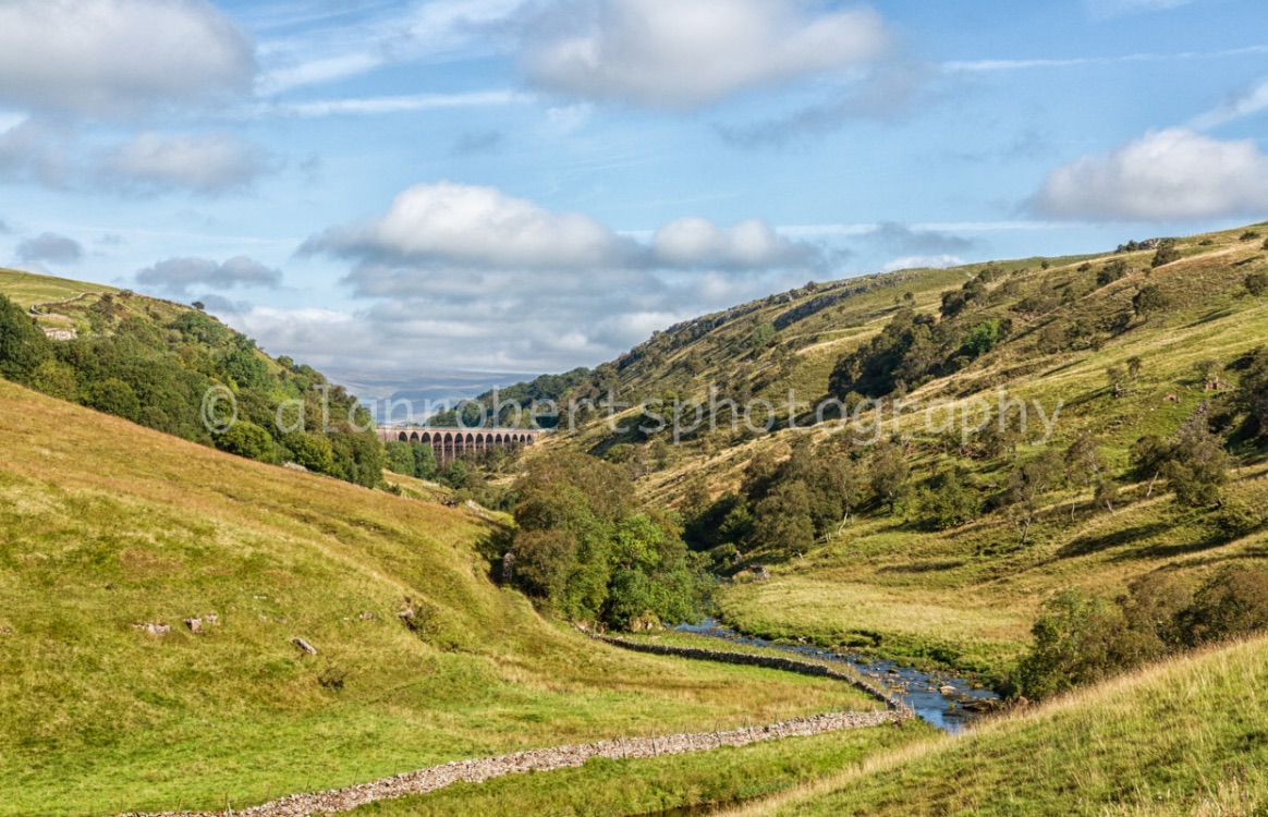 SMARDALE EARLY AUTUMN