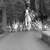 Monmouthshire Hunt