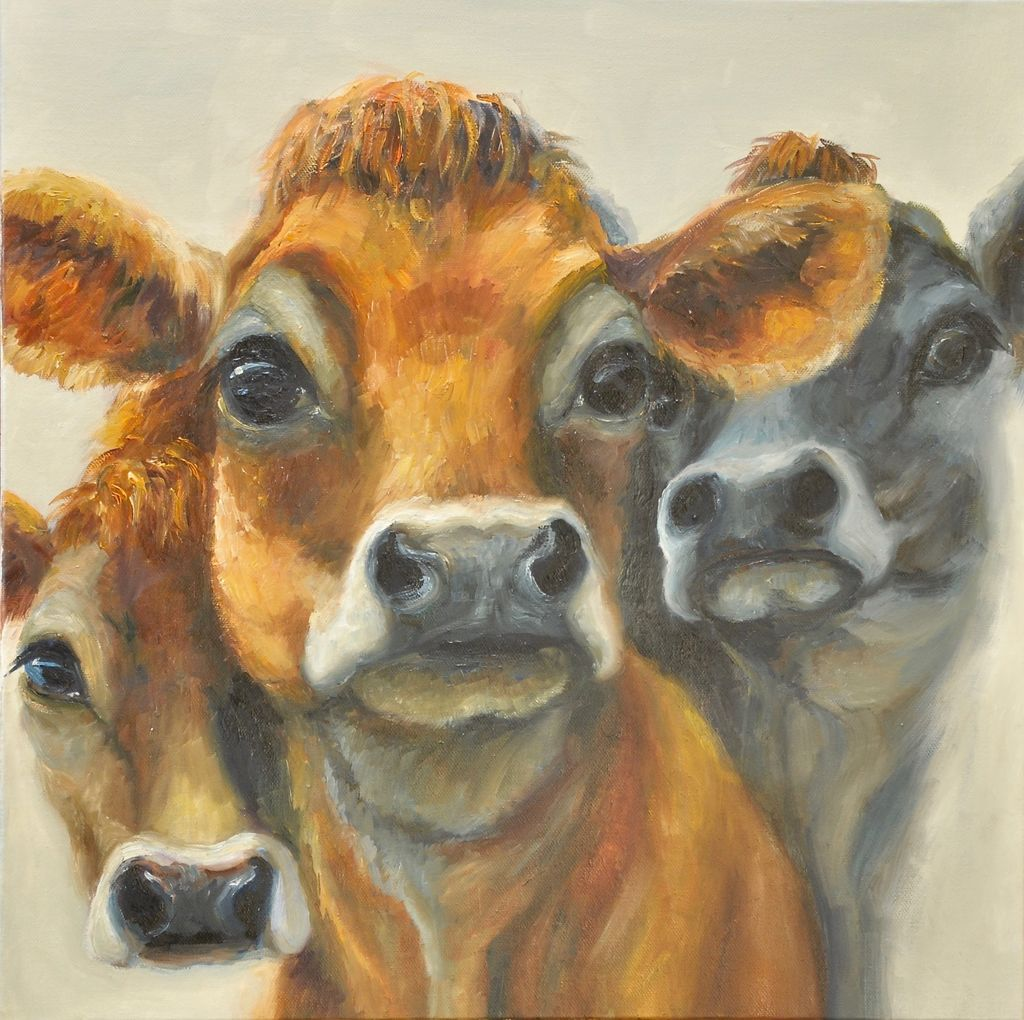 Three Heifers